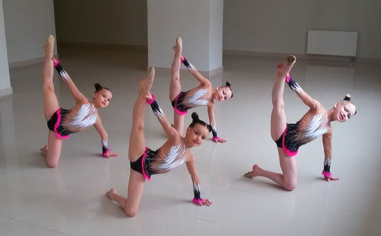 Вологодские школьницы стали призерами всероссийского турнира по эстетической гимнастике