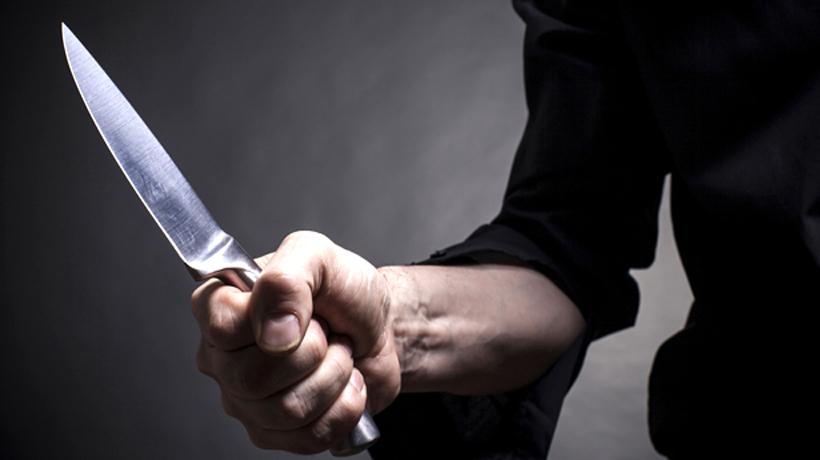 Вологжанин порезал ножом свою подругу и пытался сам зашить ей раны