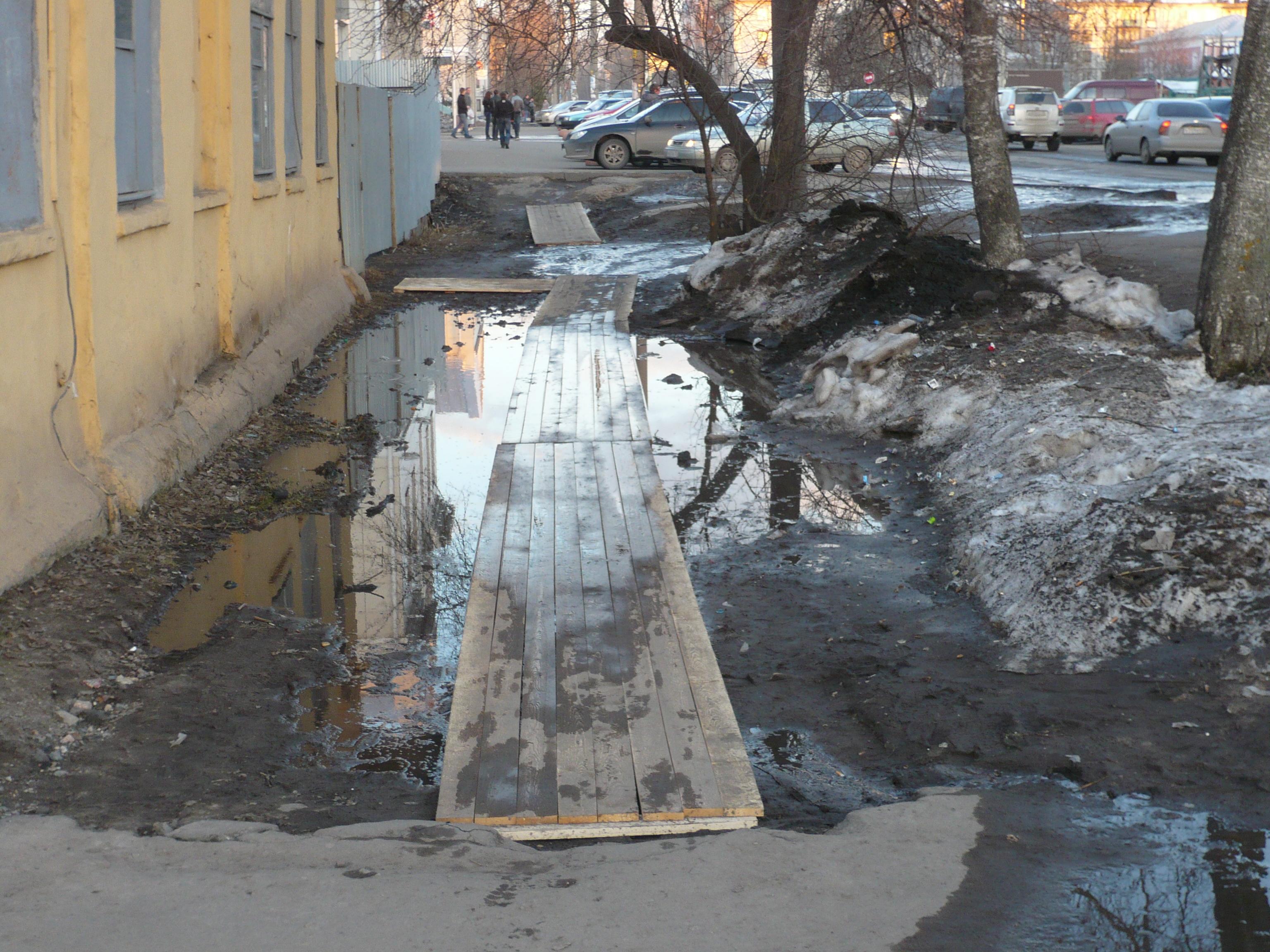 """За год в """"Вологдазеленстрое"""" сменились пять руководителей"""