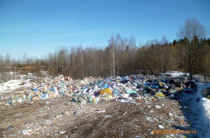 В Шексне начались мусорные войны