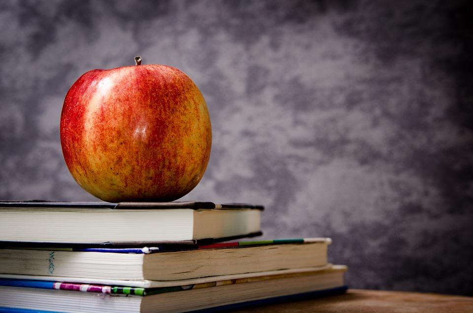 В Вологодской области учителям приходится сдавать деньги на ремонт школ и покупать себе учебники