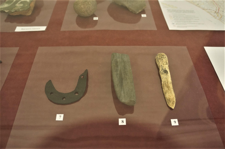 Выставка находок вологодских археологов открылась в Доме Левашова