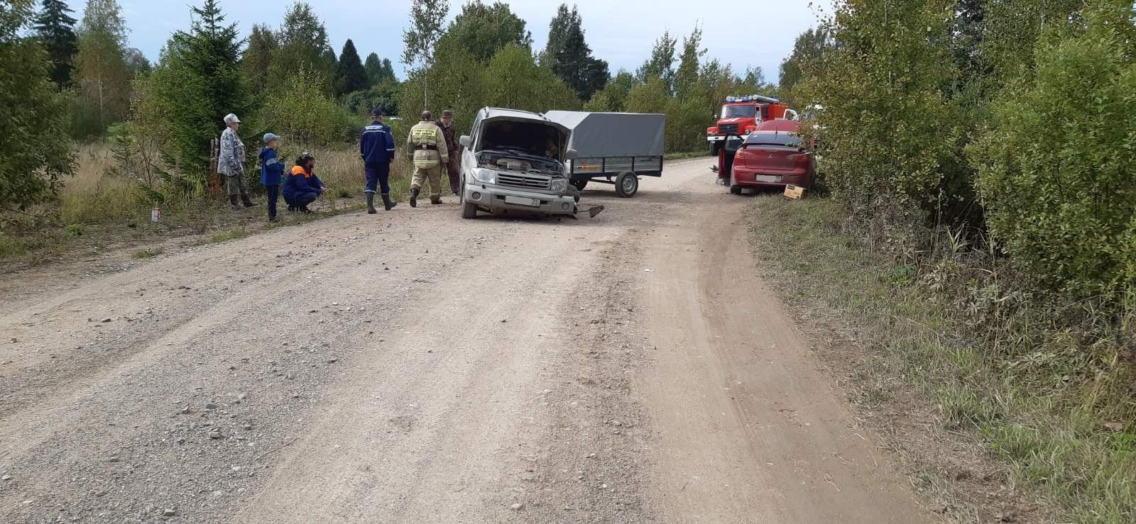 Двое взрослых и ребенок пострадали в ДТП в Шекснинском районе