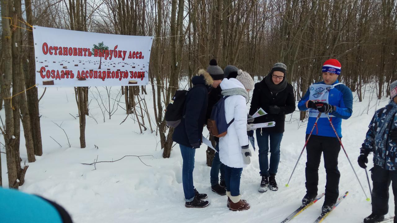 Череповецких активистов выборочно оштрафовали за сбор подписей в защиту леса