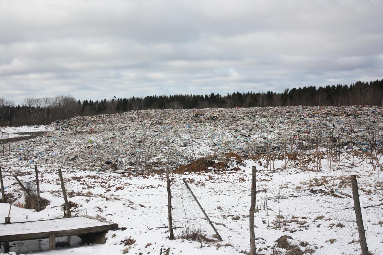 Жизнь на свалке: о реализации мусорной реформы в отдельно взятом череповецком поселке