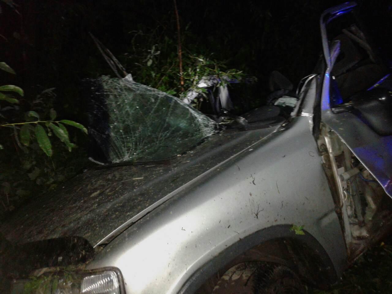 ВЧереповце водитель «Хонды» врезался встолб ипогиб