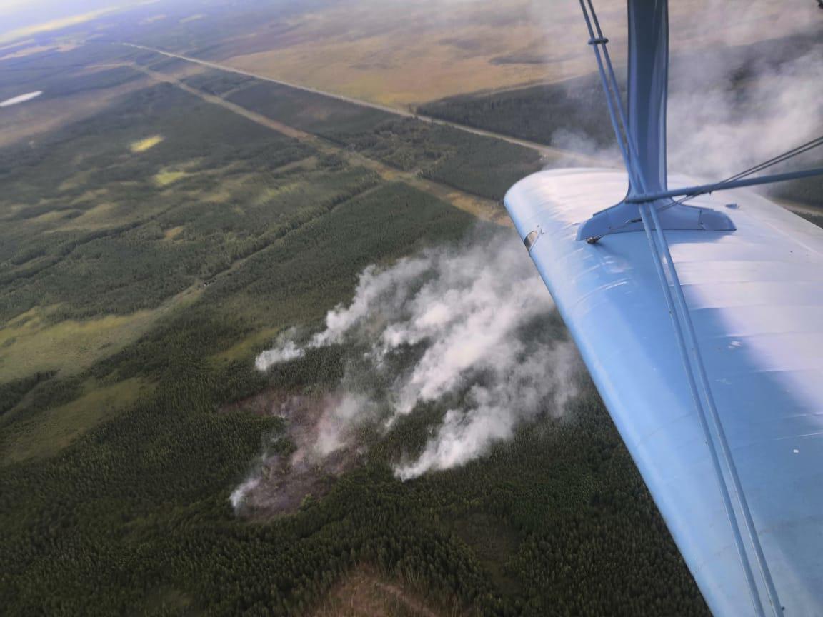 ВВологодской области горят 792 гектара леса