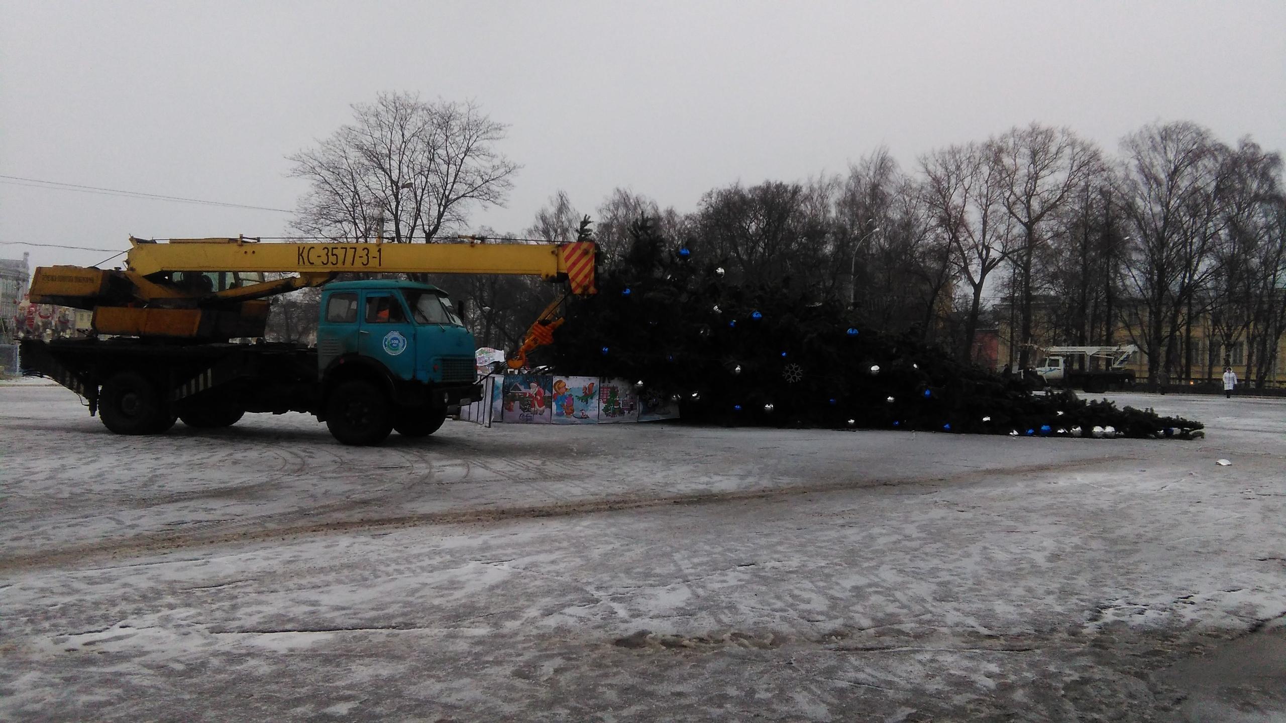 На площади Революции в Вологде упала новогодняя елка