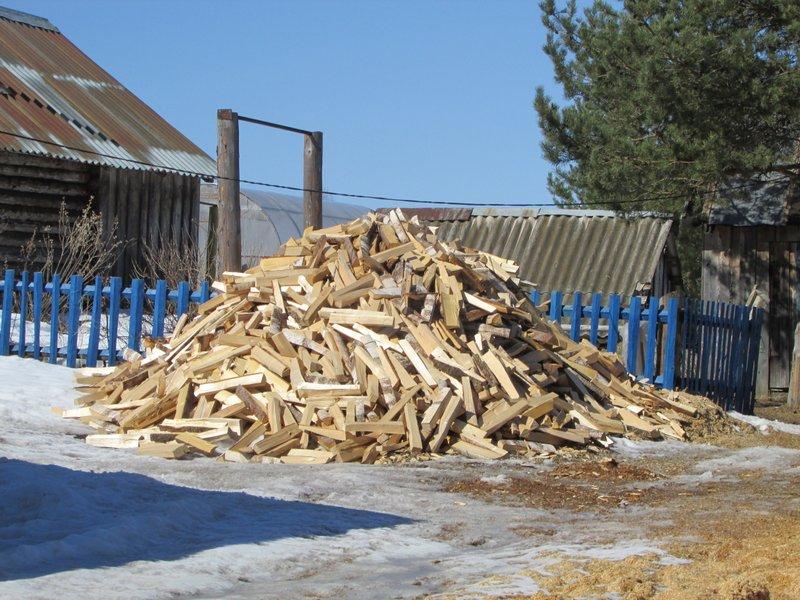 В Череповецком районе задержали мужчину, который незаконно вырубил на дрова 130 деревьев