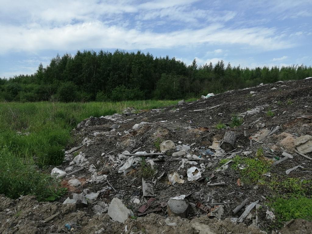 Спичечную фабрику в Череповце обязали ликвидировать незаконные свалки в черте города