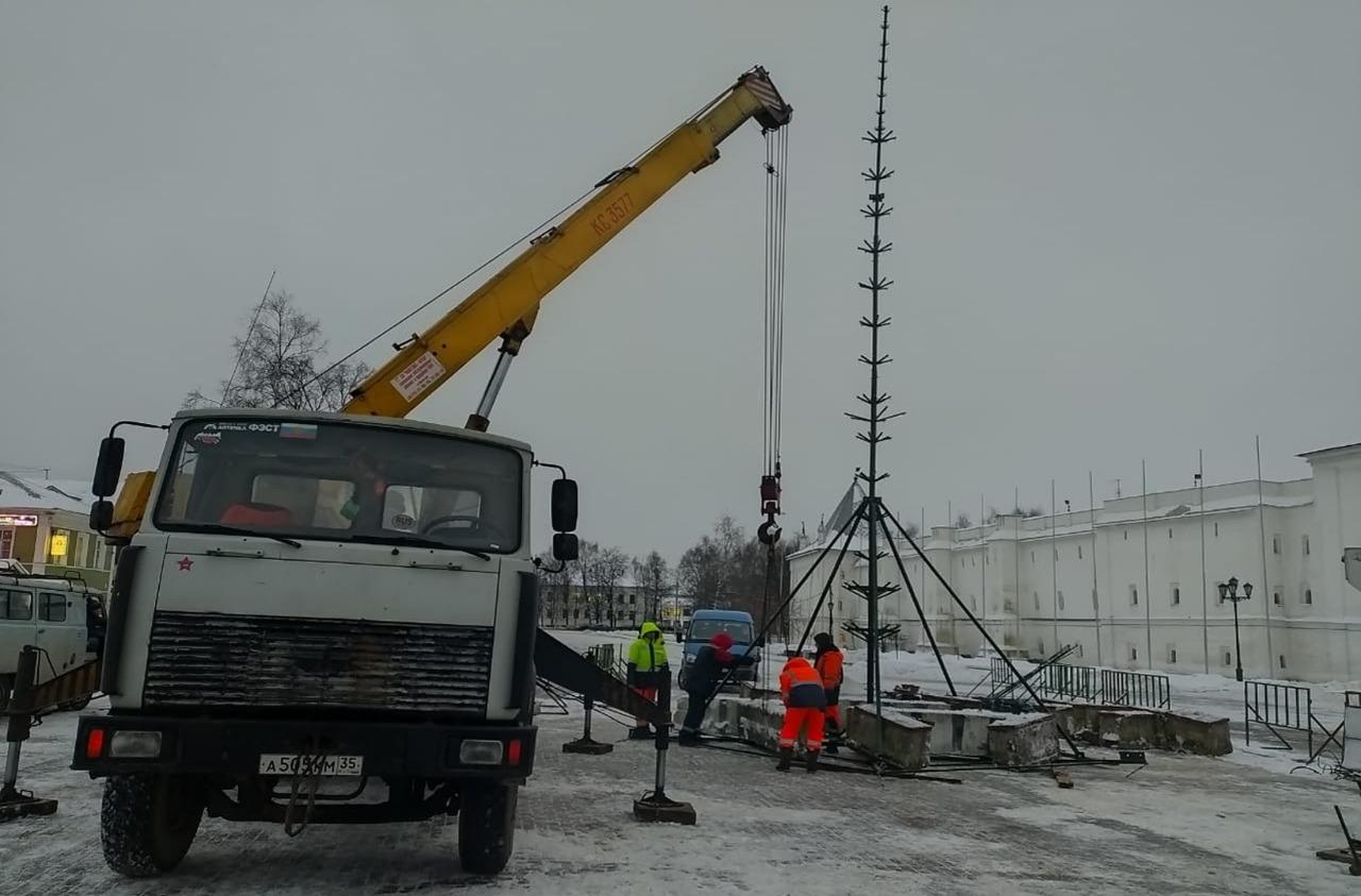 Купленную в прошлом году для площади Революции в Вологде ель установят на Кремлевской площади