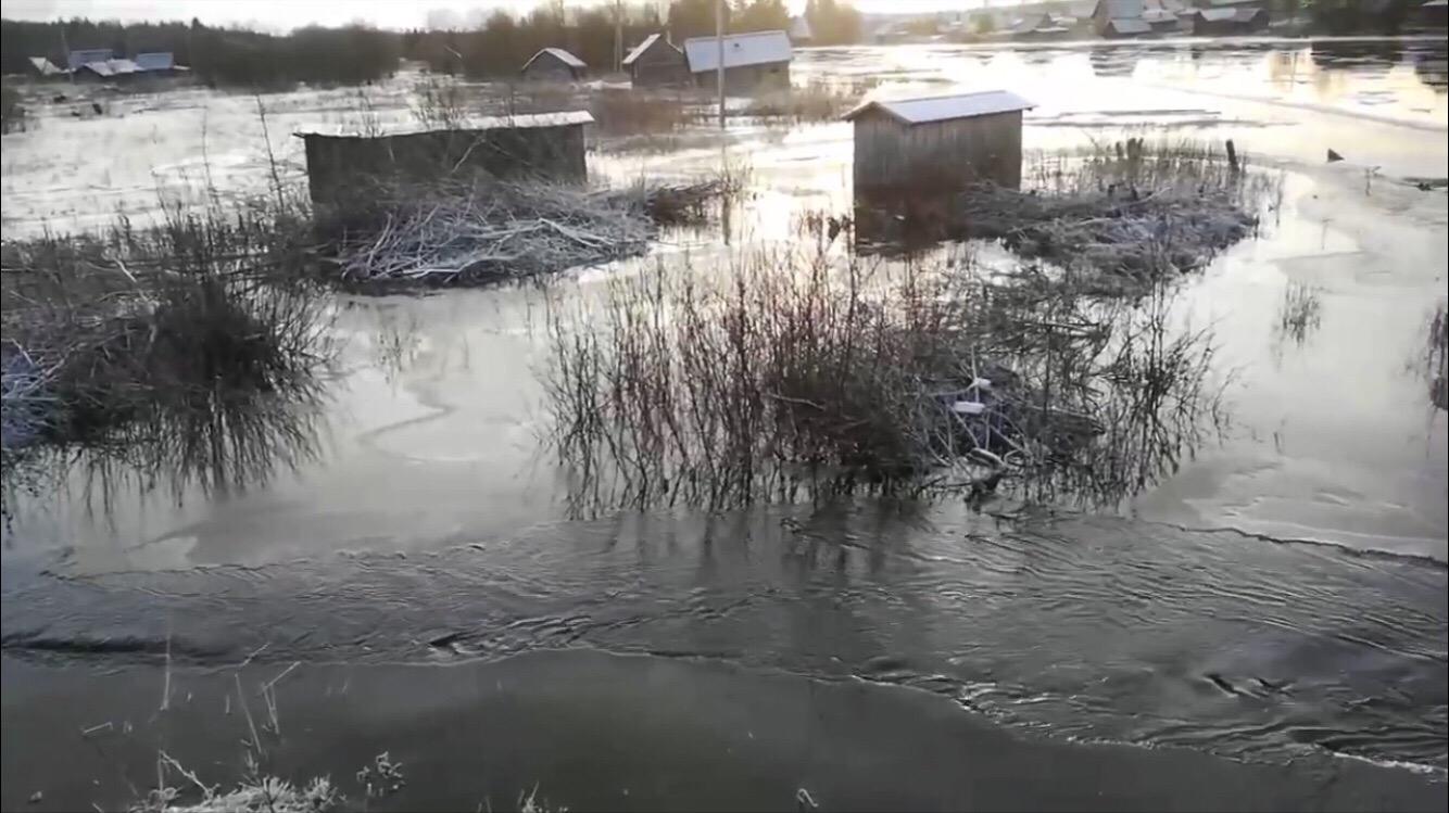 В селе Куность Белозерского района затопило хозпостройки возле реки