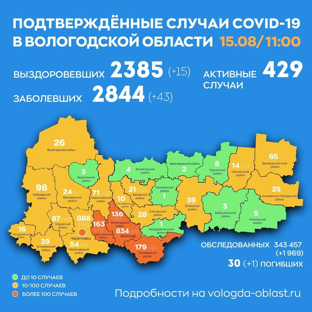 43 новых случая COVID-19 выявили  за сутки в Вологодской области