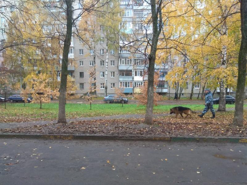 Вологжанин похитил у собутыльницы куртку с 5 000 рублей в кармане