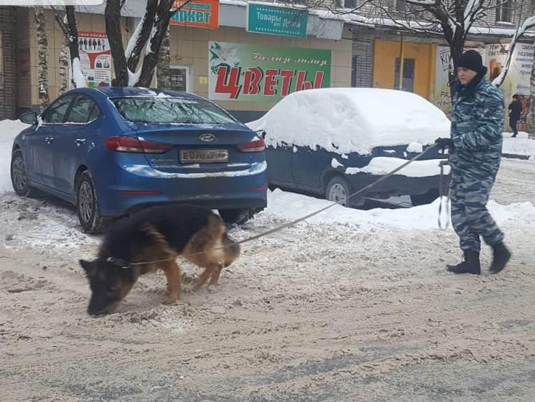 В Вологде полицейская овчарка помогла найти 13-летнего мальчика, который ушел гулять и пропал