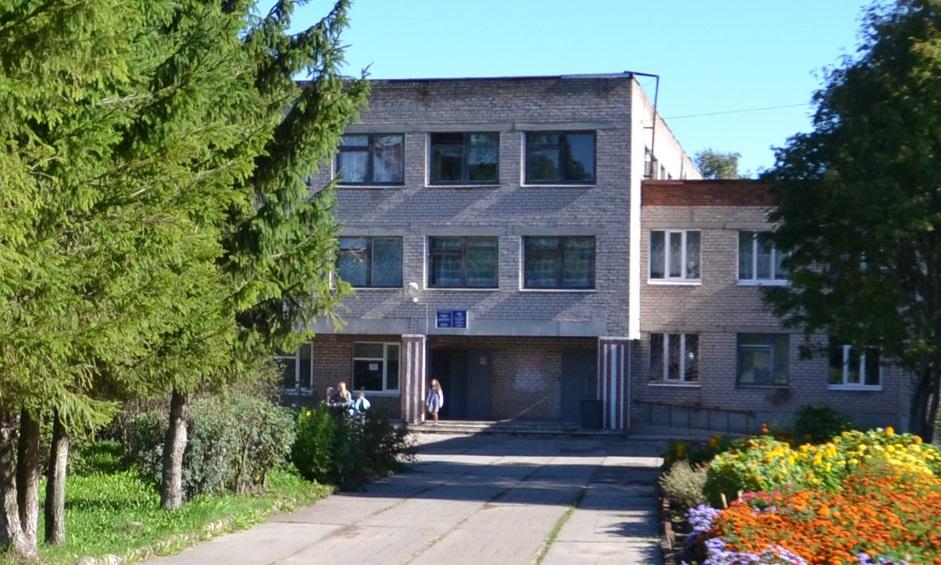 В деревне Ботово Череповецкого района девочка выпала из окна школы
