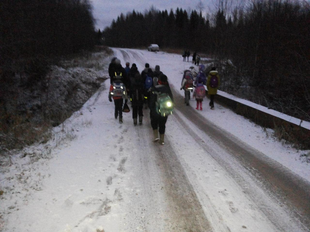 В Вытегорском районе детям приходится ходить в школу пешком по неосвещенной дороге из-за аварийного моста