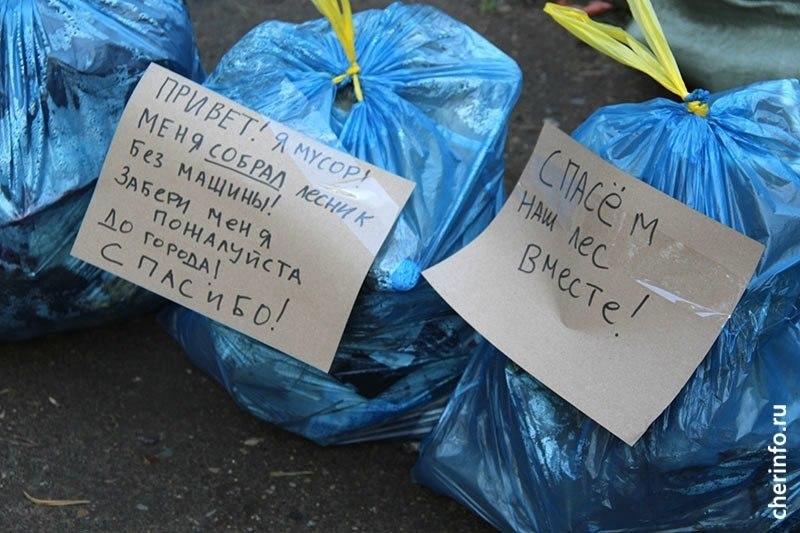 В Череповце неизвестный собирает мусор в Зеленой роще и оставляет пакеты с записками