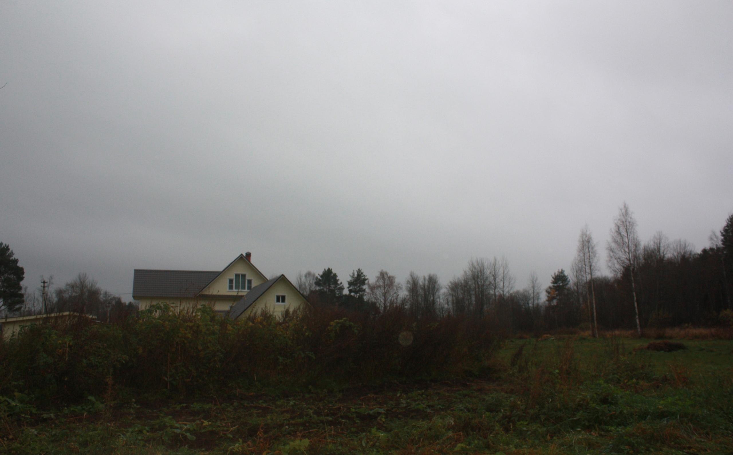 Гектар для депутата: в Усть-Кубинском районе на месте выделенного под вырубку леса оказались дома