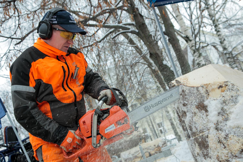 В Вологде открылась выставка «Российский лес»