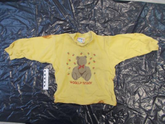 В Вологде объявили вознаграждение 100 тысяч рублей за информацию о матери найденного на свалке мертвого младенца