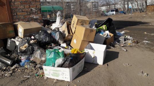 В Вологде прокуратура обнаружила нарушения при вывозе мусора по нескольким адресам