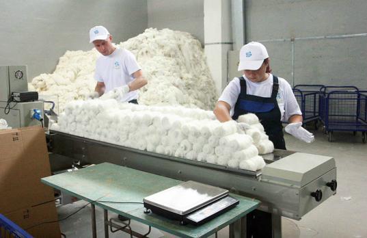 АПК «Вологодчина», занимавшаяся льноводством, доведена до банкротства