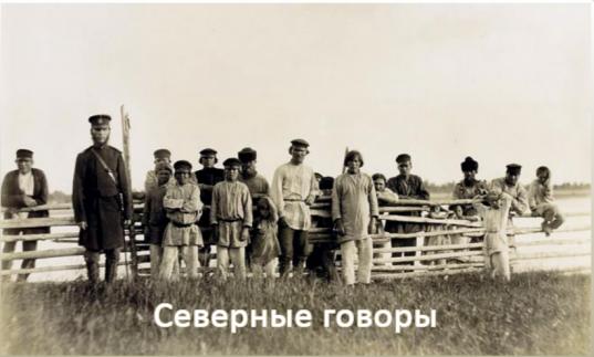 Электронные копии книг и статей о народах Русского Севера выложили на сайте Вологодской областной библиотеки