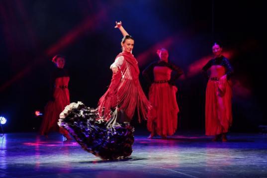 В Вологодской областной филармонии пройдет мастер-класс по фламенко