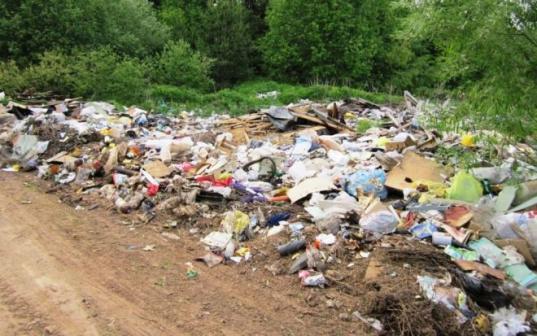 В Белозерском районе суд обязал местных чиновников ликвидировать еще одну незаконную свалку