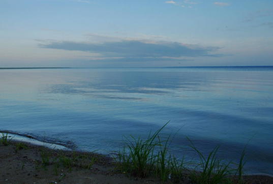 19-летняя девушка, утонувшая в Вологодском районе, погибла, спасая ребенка