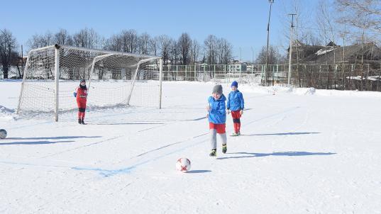 Крытый футбольный манеж обещают построить в микрорайоне ПЗ в Вологде до конца 2021 года