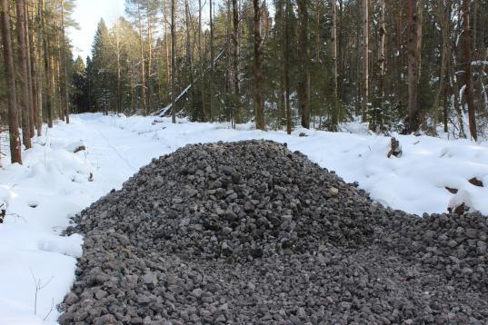 Мэрия Череповца объявила публичные слушания по застройке Пуловского леса