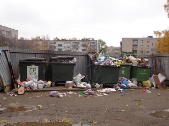 Прокуратура: покупать мусорные баки на контейнерные площадки обязан региональный оператор