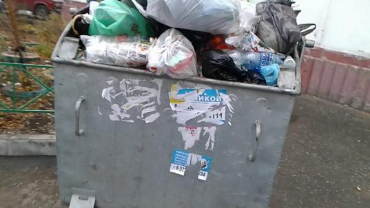 Прокуратура помешала властям Чагодощенского района потратить 4 млн рублей на мусорные баки