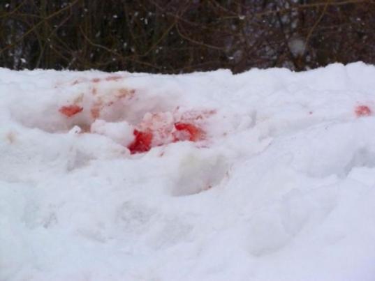Три пьяные жительницы Кадуя до смерти избили на улице 50-летнюю женщину