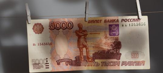 Миллион рублей в месяц: депутаты вологодских гордумы и заксобрания отчитались о доходах за 2018 год