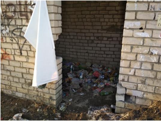 Вологжанин больше месяца требует у регоператора убрать незаконную свалку на улице Ленинградской