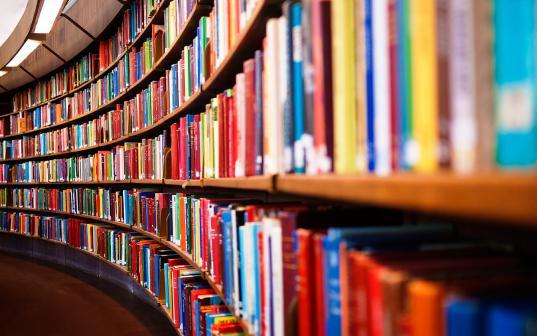 Две библиотеки в Вологде и Соколе получат 10 млн рублей на модернизацию