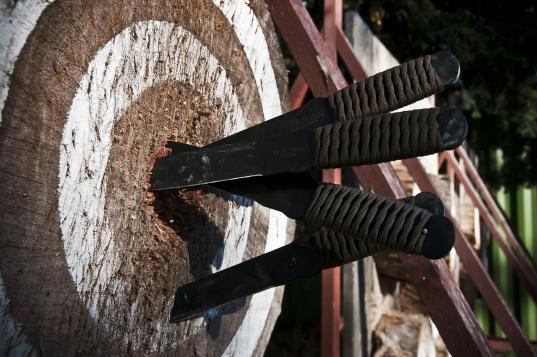 В Череповце 26 января пройдет открытый турнир по метанию ножей и топоров