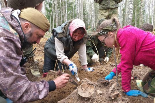 Останки 49 красноармейцев обнаружили вологодские поисковики во время экспедиции в Ленобласти