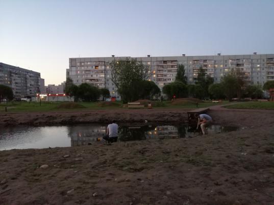 УФАС проверит законность аукциона на ремонт Фрязиновского парка в Вологде