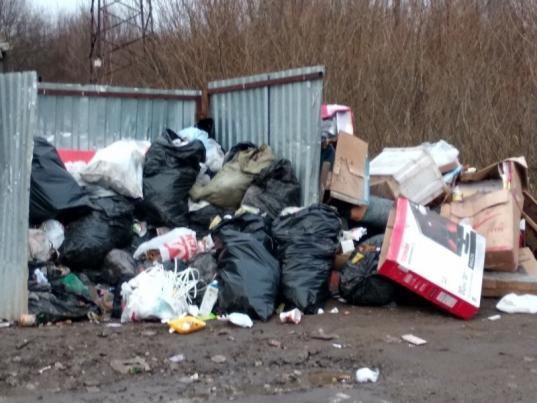 В Вологде регионального оператора обязали убирать площадки, переполненные из-за вывоза мусора не по графику