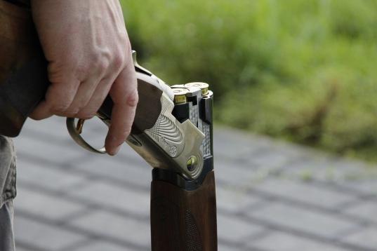 В Сямже осудили пенсионера, который застрелил соседа из-за забредшего на его участок козла