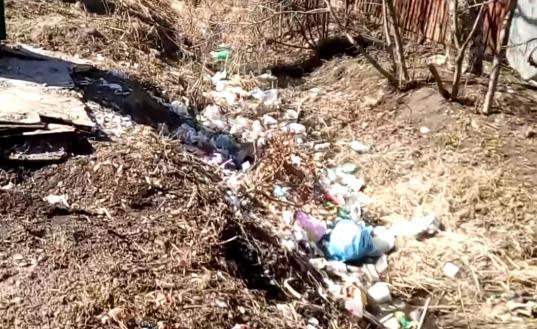 В Белозерске из-за отсутствия контейнерных площадок придорожные канавы завалены мусором