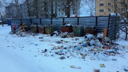 Митинг против роста тарифа на вывоз мусора в Вологде состоится, если наберется 500 репостов о нем в соцсети