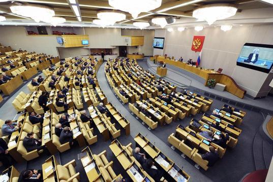 В Госдуме пояснили, что мэры и губернаторы под закон о неуважении к власти не подпадают