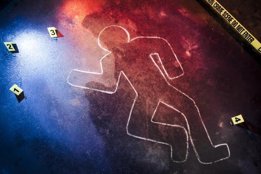 Следы волочения трупа привели полицию к месту убийства в Вологде