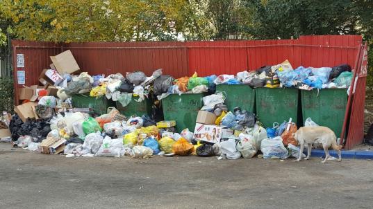 В Череповце тариф на вывоз мусора с 1 июля снизится больше, чем в Вологде?