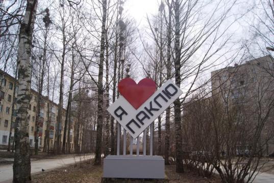 Депутат гордумы Михаил Тихомиров установил в Вологде арт-объект, посвященный Пакле
